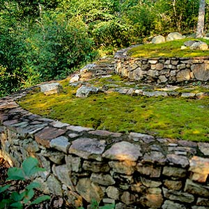 moss garden with stone retaining walls